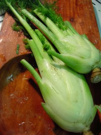 fennel-bulbs.jpg