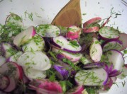 Radishes and Herbs Mixed