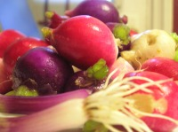 Radishes and Scallions