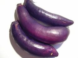eggplant-x3.jpg