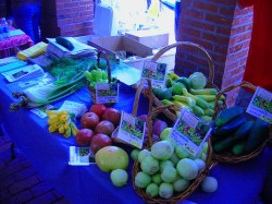 headhouse-market-ww-farm-stand.jpg