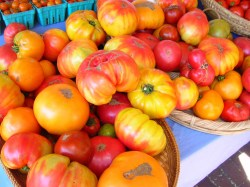 heriloom-tomatoes-at-headhouse.jpg