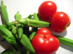 okra-and-tomatoes-fresh.jpg
