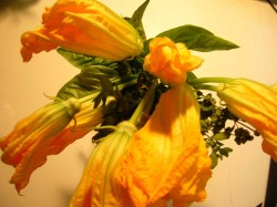 squash-blossoms-and-herbs.jpg
